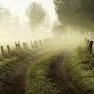Фотография туман.
